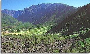 El Paso. Isla Bonita. La Palma.